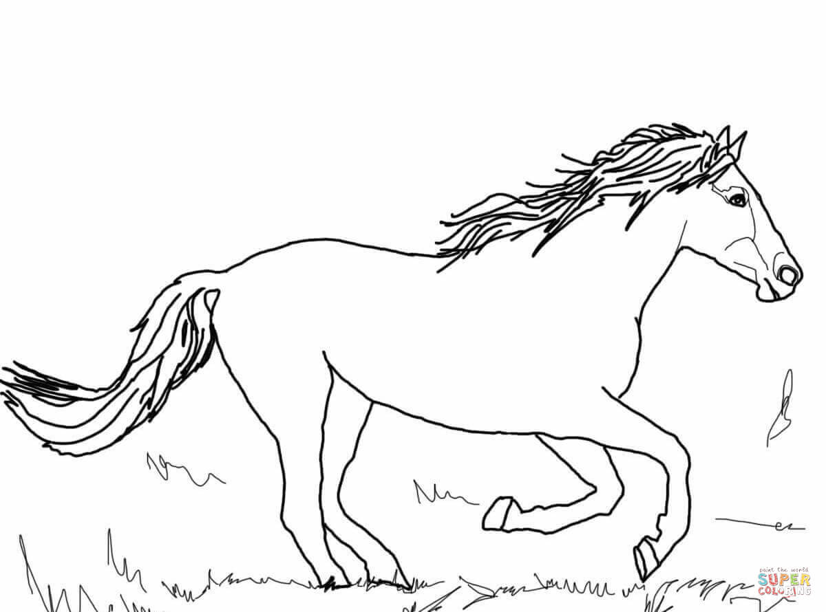 1200x890 Beautiful Mustang Horse Coloring Page Free Printable Pages