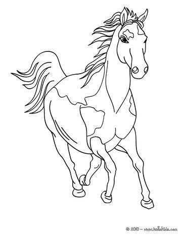 364x470 Wild Horse Coloring Pages