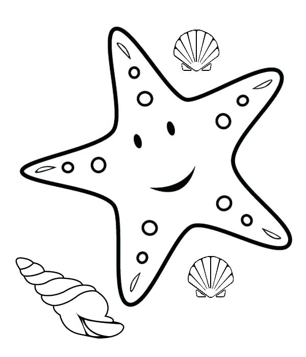 600x700 Coloring Page Of A Star Genuine Starfish Coloring Page Star Fish
