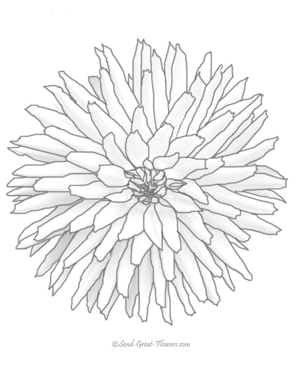 612x792 Best Coloring Pages Flowers Leaves Gardening Spring
