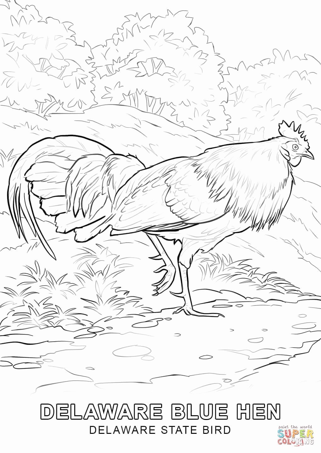 1020x1440 Delaware State Seal Coloring Page Gallery Delaware State Bird