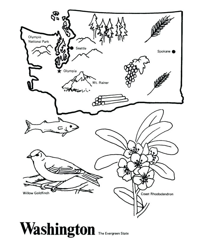 670x820 Washington State Coloring Pages State Coloring Pages State Flag