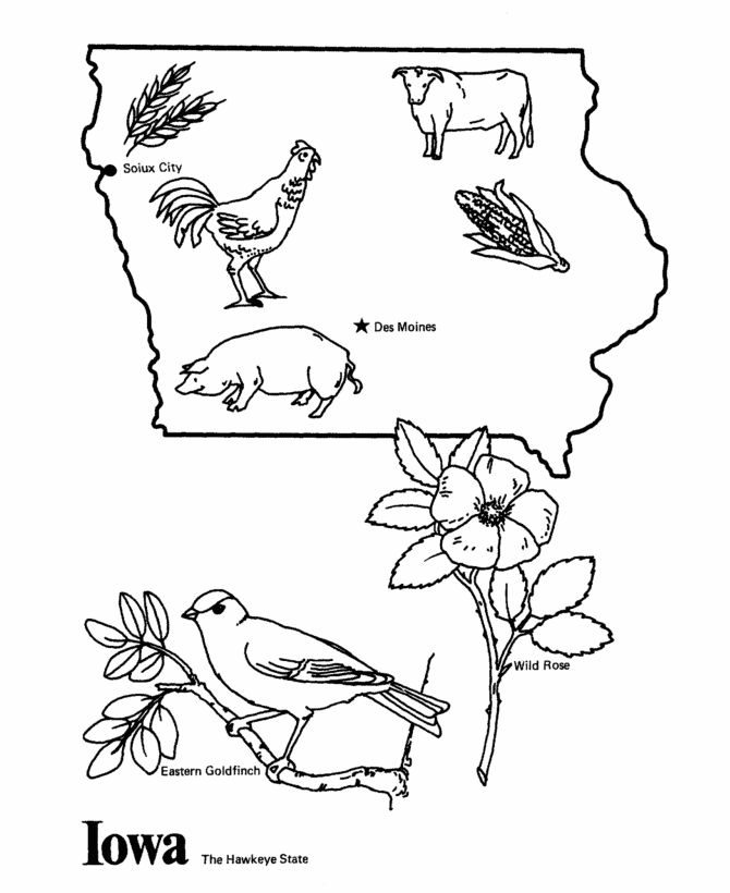 670x820 Iowa State Outline Coloring Page Cc Cycle Week Iowa
