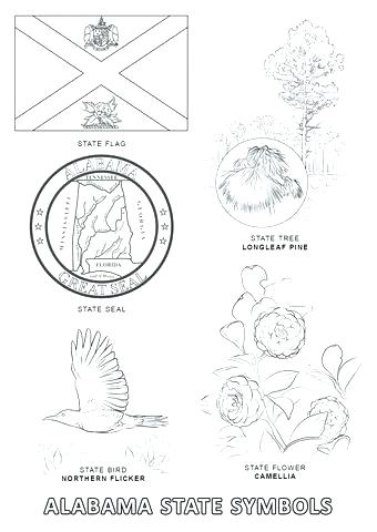 340x480 Alabama State Flag Coloring Pages State Flower Coloring Page
