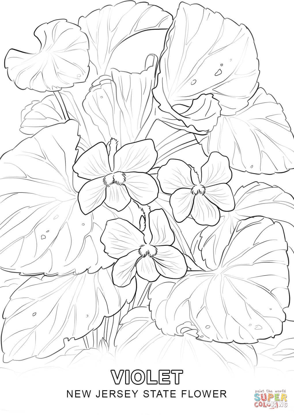1020x1440 Fresh State Flower Coloring Pages Collection Printable Coloring
