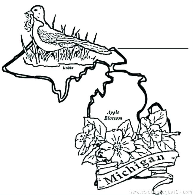 650x659 Michigan Coloring Book Coloring Pages Coloring Page Coloring Pages