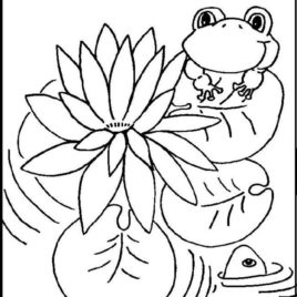268x268 Coloring Pages Water Lily Kids Drawing And Coloring Pages