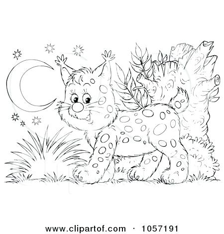 Steer Coloring Pages At Getdrawings Com Free For Personal Use
