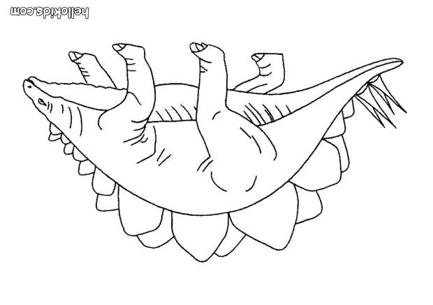 620x438 Stegosaurus Coloring Page Baby Stegosaurus Coloring Page