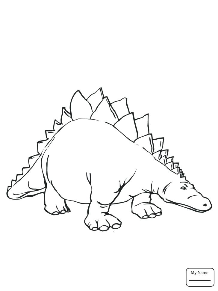 728x971 Stegosaurus Coloring Page Medium Size Of Stegosaurus Coloring Page