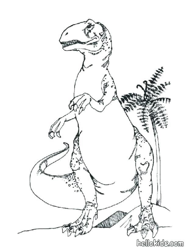 617x822 Stegosaurus Coloring Page Stegosaurus Coloring Page Dinosaur