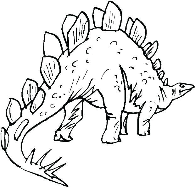 620x599 Stegosaurus Coloring Page Stegosaurus Coloring Page Stegosaurus