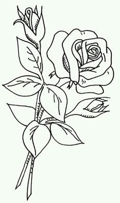 236x399 Free Coloring Pages Sheets Of Roses Free Printable, Free