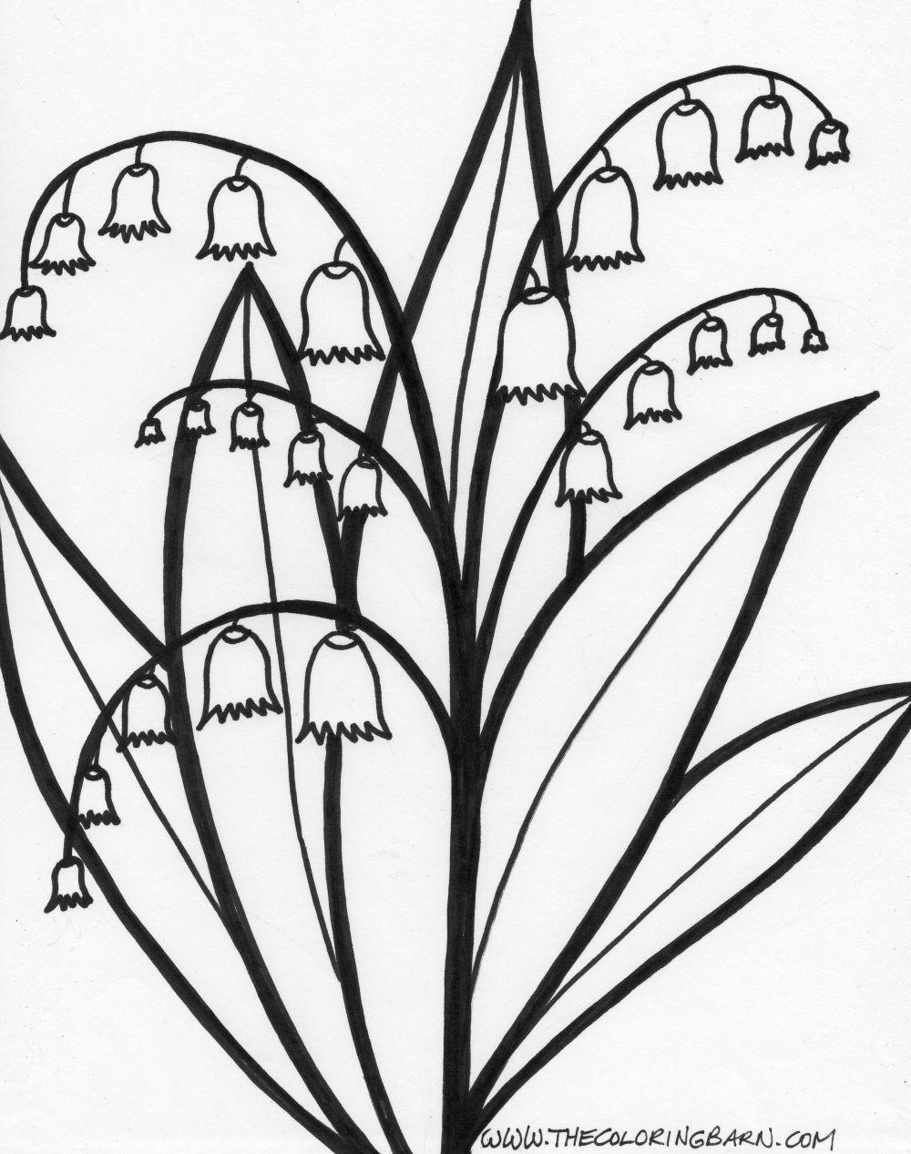 1000x1267 Stem Coloring Pages Page Long Stem Roses Coloring Rajzocska