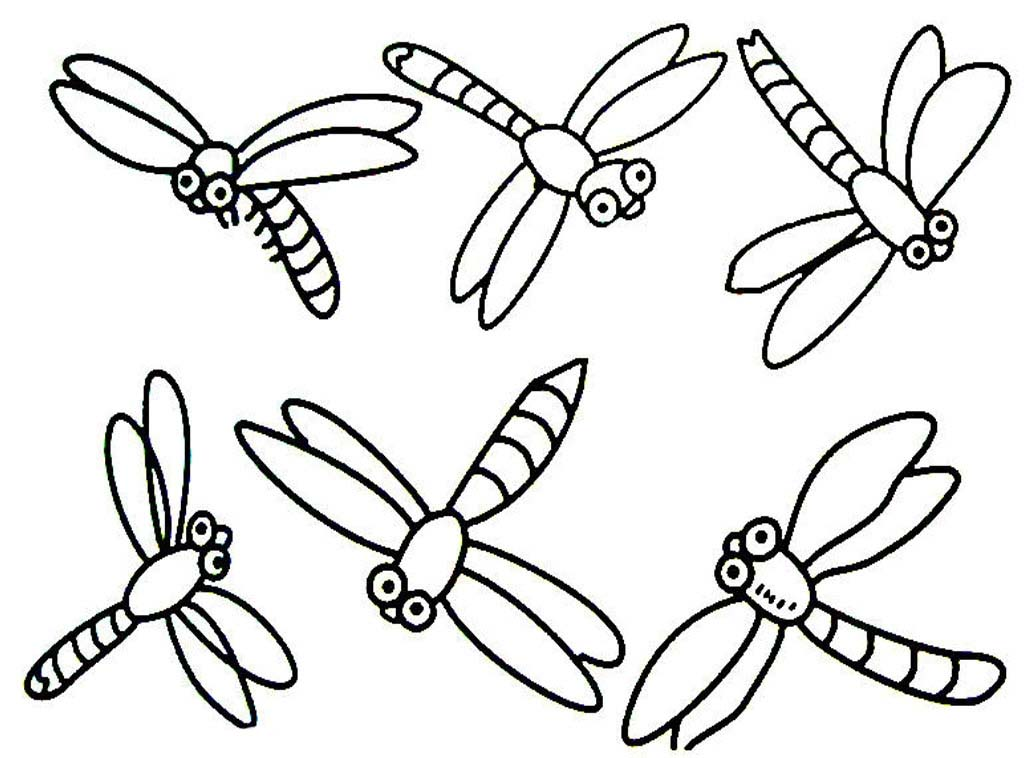 1024x758 Dragonfly Coloring Pages Dragonfly Sits On Stem Coloring Pages