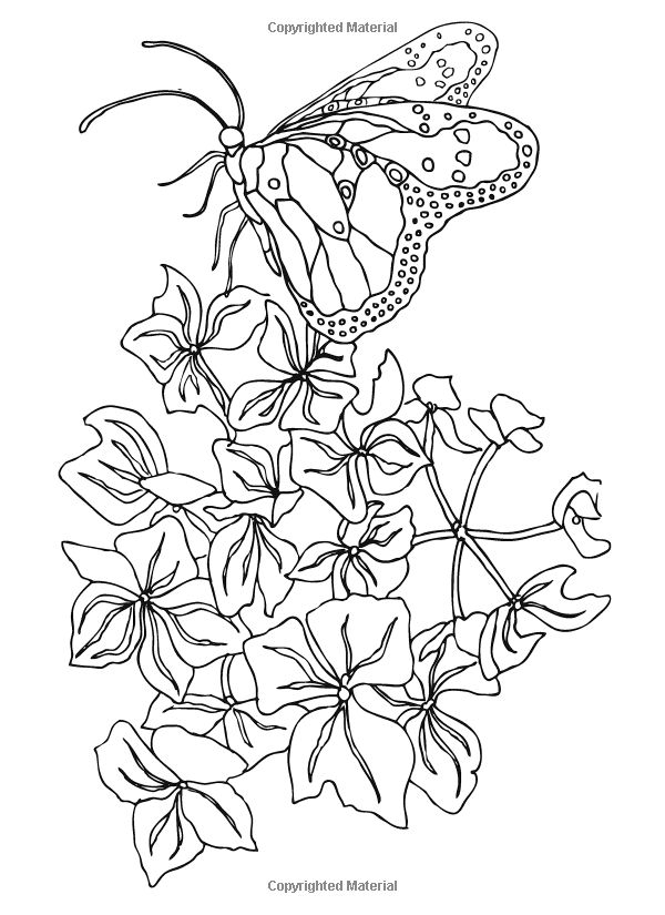 Stereo Coloring Pages At Getdrawings Com