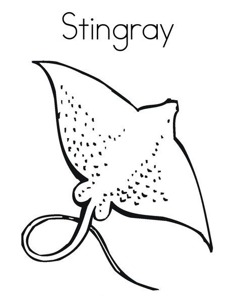 468x605 Top Free Printable Stingray Coloring Pages Online Craft