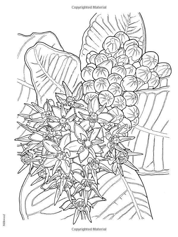 Stonehenge Coloring Page at GetDrawings com   Free for