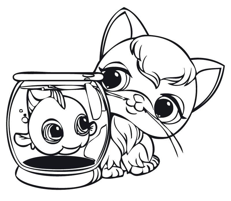 800x697 Pet Shop Coloring Pages Pet Shop Coloring Pages Printable Series