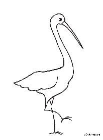 205x280 Stork