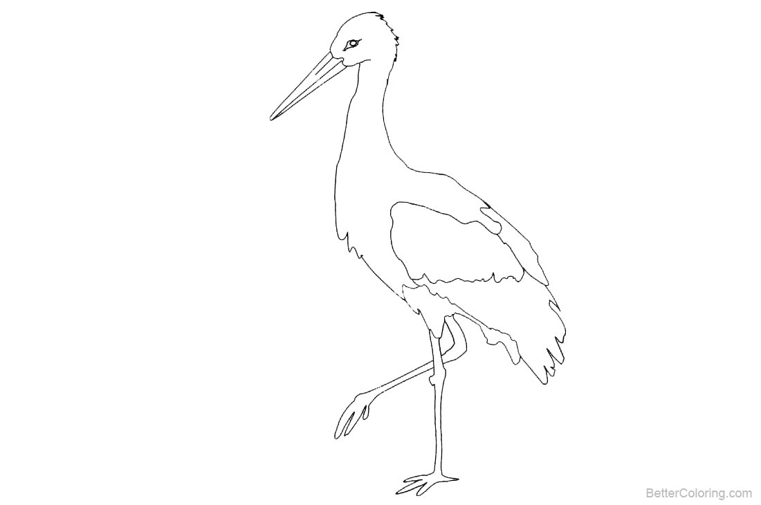 1100x730 Stork Coloring Pages