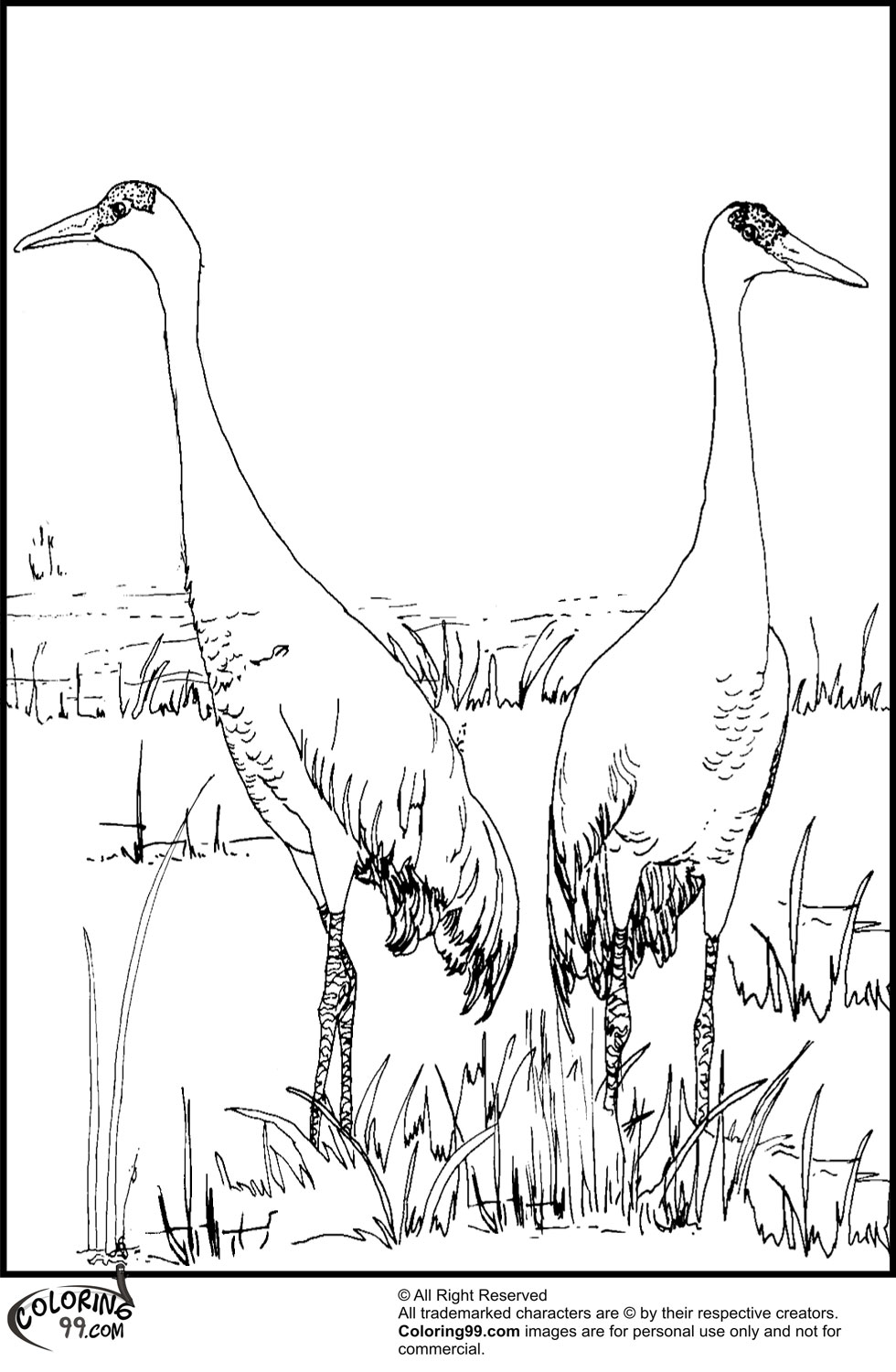 980x1500 Stork Coloring Pages Team Colors