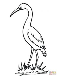225x300 Canvases Of Stork Coloring Pages