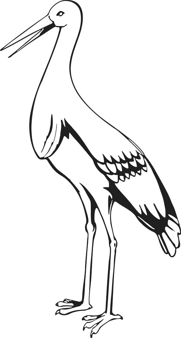 600x1123 Stork Coloring Pages Free Stork Coloring Pages