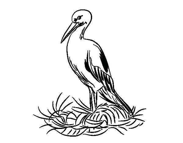 600x470 Stork Coloring Pages Stork And Nest Coloring Page Stork Colouring