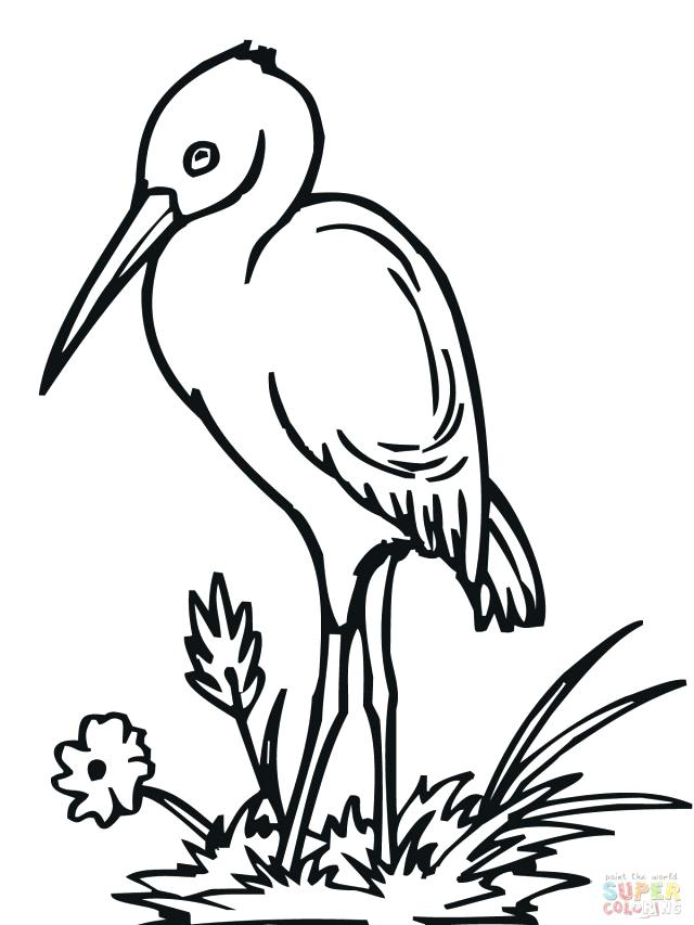 640x853 Stork Coloring Pages Stork Coloring Page Bird Free Stork Coloring