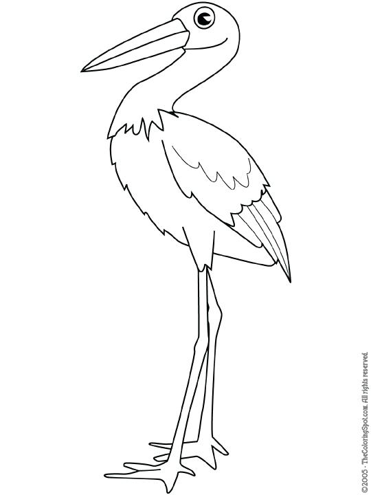 540x720 Stork Coloring Pages Stork Free Stork Coloring Pages