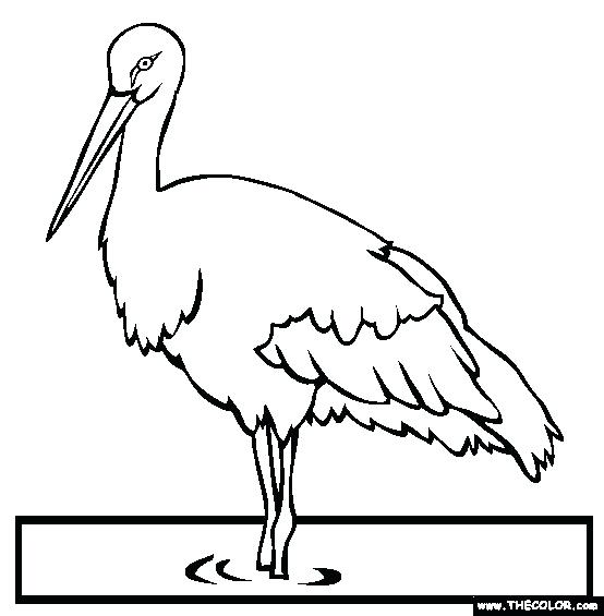 554x565 Stork Coloring Pages Crane Bird On Paddy Field Coloring Pages