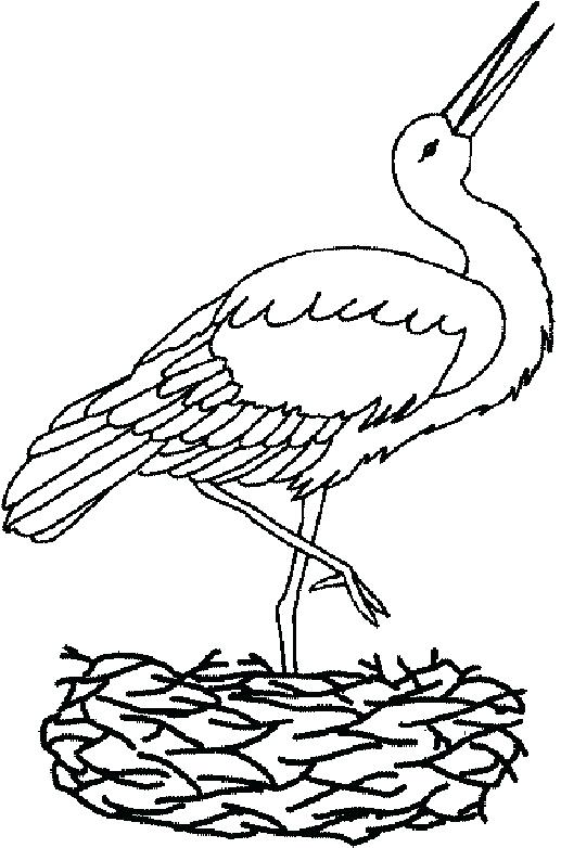 517x782 Stork Coloring Pages Dumbo Coloring Pages Medium Size Of Dumbo