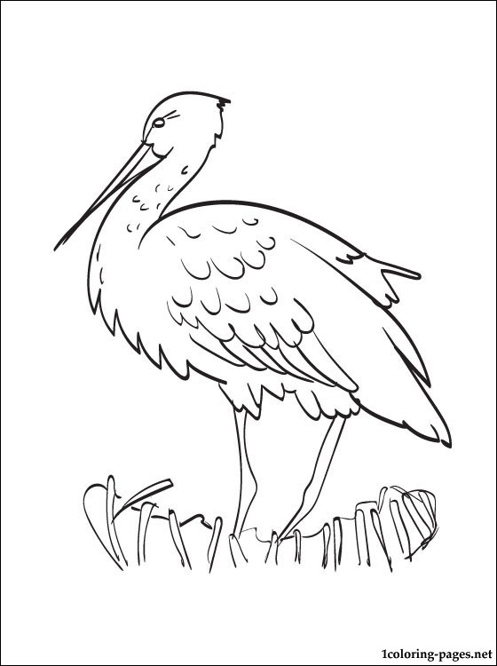560x750 Stork Coloring Page Coloring Pages