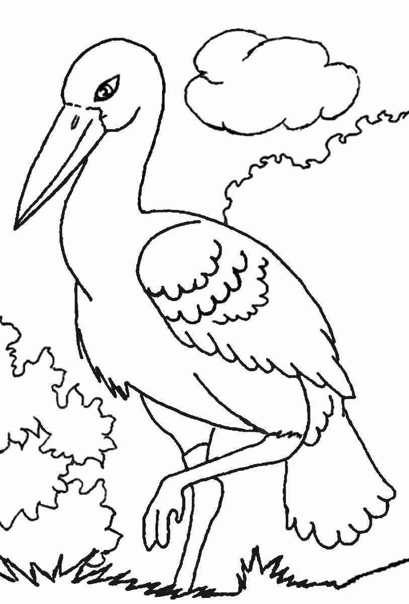 813x1200 Storks Coloring Pages