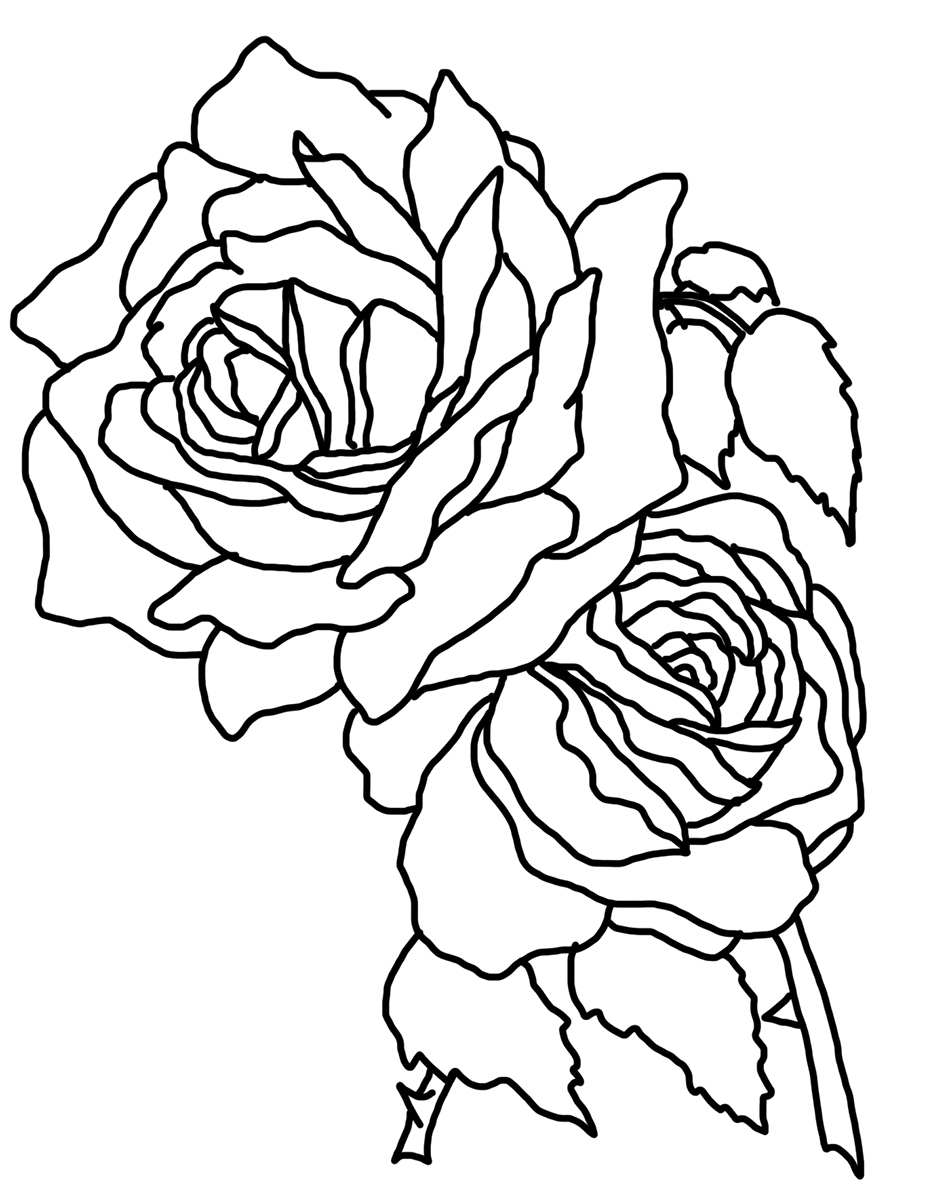 948x1181 Valuable Coloring Page Of A Rose Flower Pages