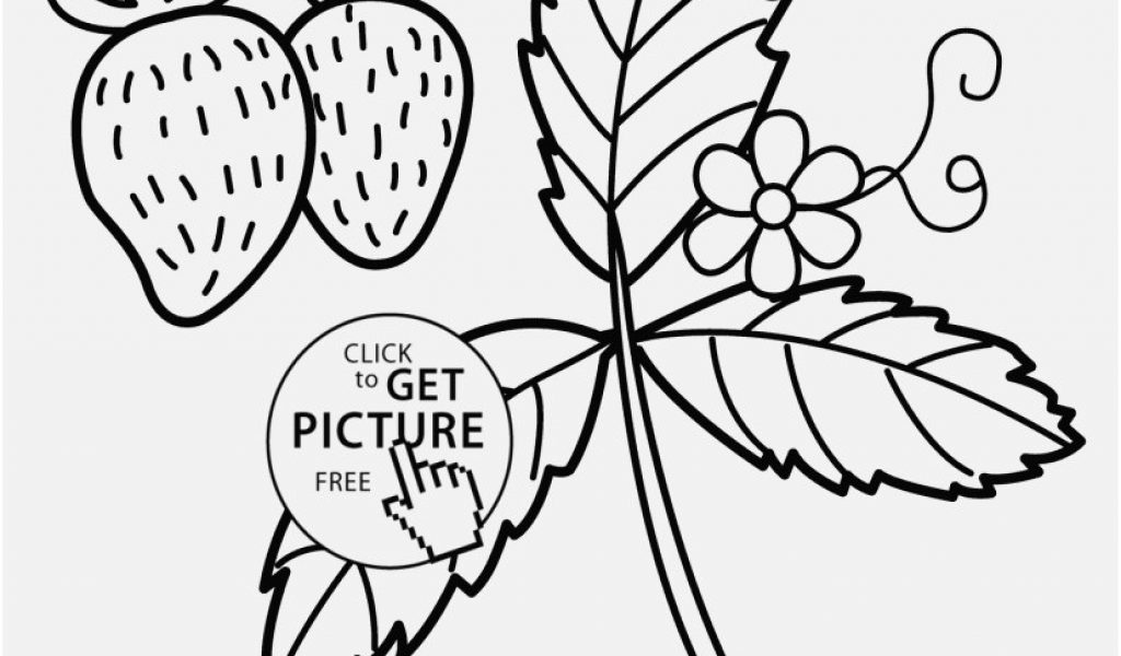 1024x600 Nature Coloring Pages Photo Strawberry Nature Coloring Page