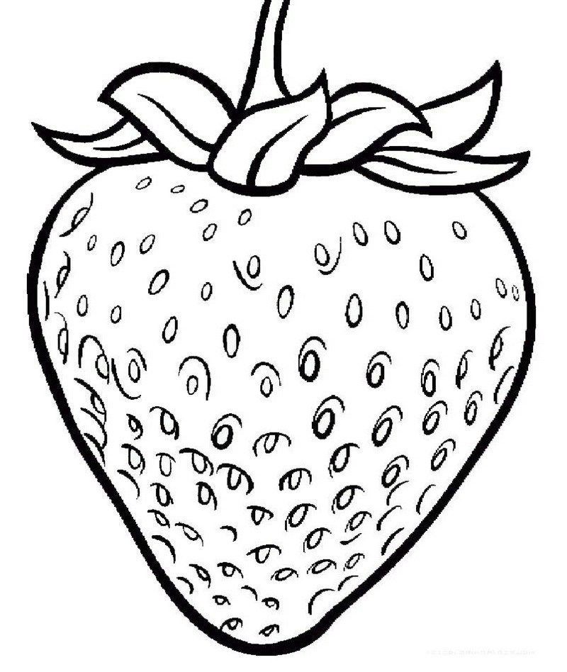 800x948 One Large Strawberry Coloring Page Printable Fruit Coloring Page