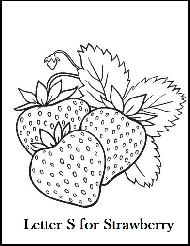 392x507 The Best Chosen Illustrations Of Strawberry Coloring Pages