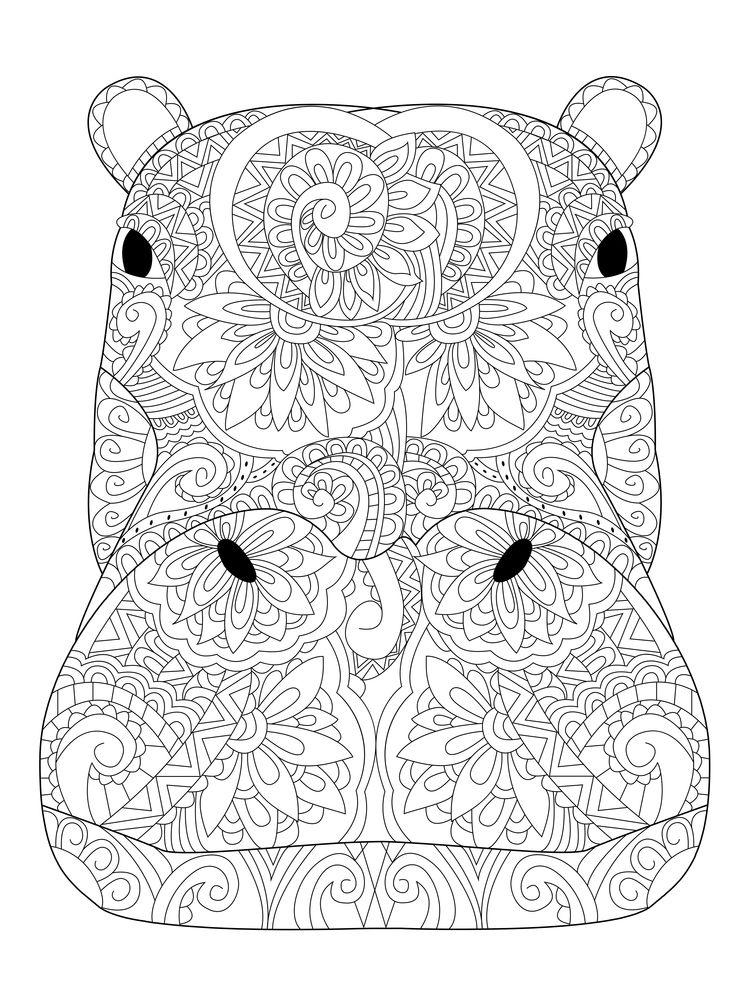 750x1000 Head Hippopotamus Coloring Book Vector Illustration Anti Stress