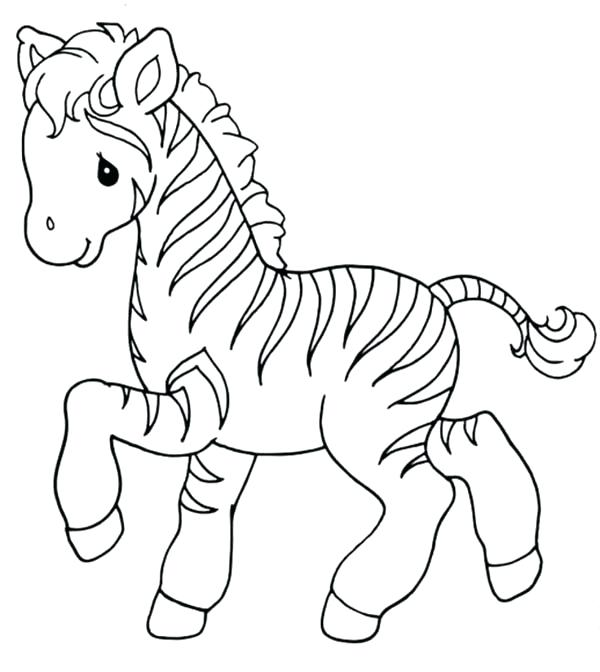 600x672 Zebra Color Page Sweet Little Zebra Coloring Page Zebra Without