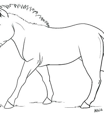 357x400 Gerbil Coloring Pages Zebra Without Stripes Coloring Page Gerbil