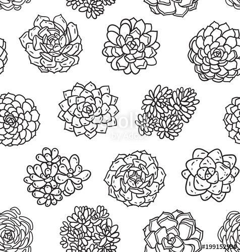 476x500 Succulents Outline Seamless Pattern Ideal For Coloring Page
