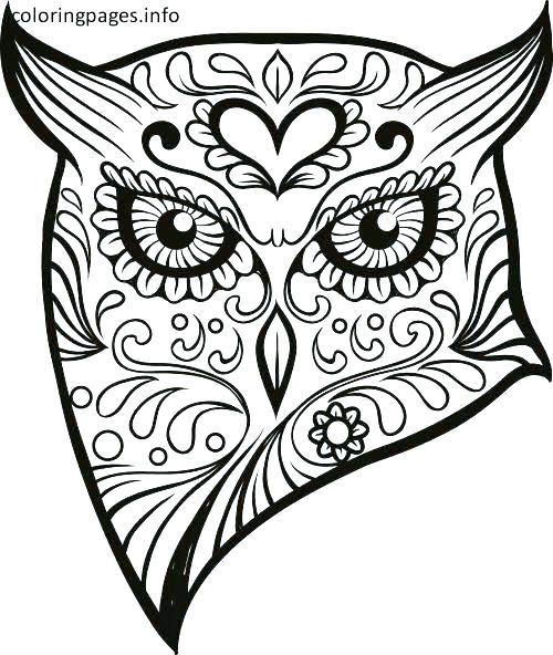 500x592 Free Sugar Skull Coloring Pages Sugar Skull Owl Coloring Sheet