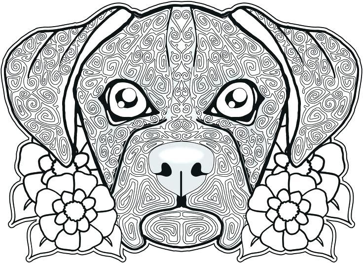 736x533 Sugar Skull Free Coloring Pages Gallery Skull Coloring Sheets