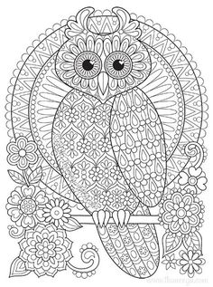 236x317 Sugar Skull Owl Coloring Page From Sugar Skulls Category Select
