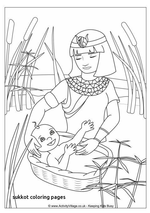 480x679 Passover Coloring Pages Free Printable Luxury Jewish Coloring