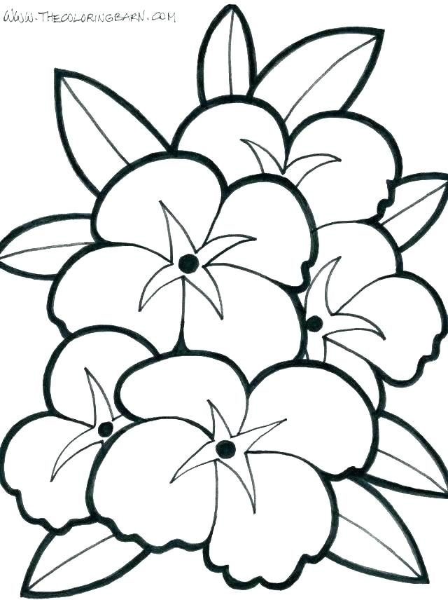640x856 Kids Coloring Pages Summer Ideas About Summer Coloring Pages