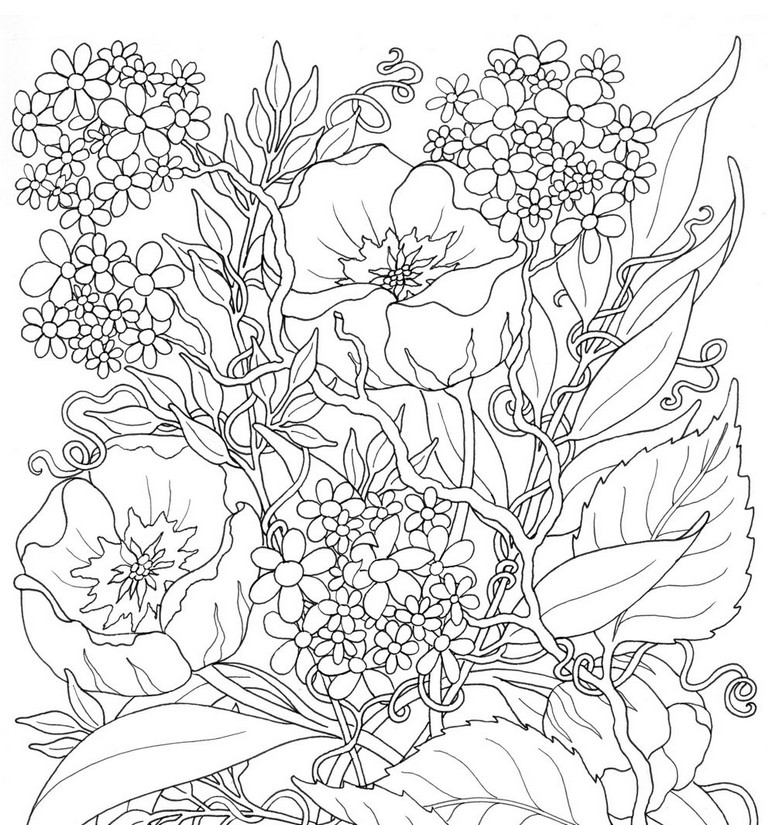 769x825 Adult Coloring Page Summer Flowers