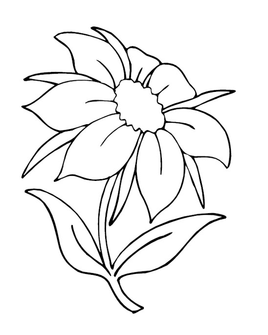 548x685 Summer Flowers Coloring Page